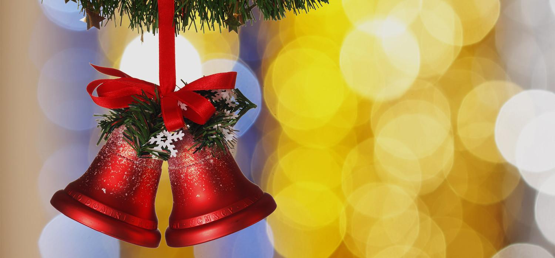 Veelgestelde vragen over Nordmann Excellent kerstbomen in Hillegom