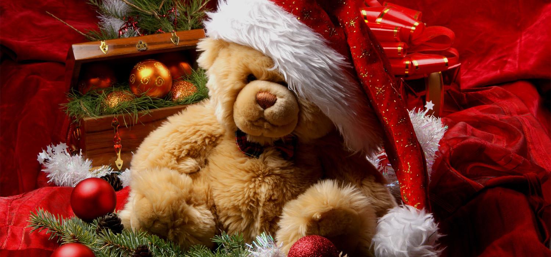 Kerstboom kerstgeschenk in Hillegom