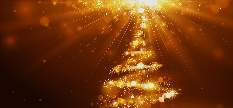 Kerstbomen voor bedrijven in Hillegom